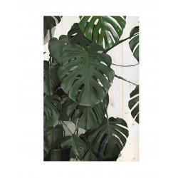 Cuadro vertical hojas